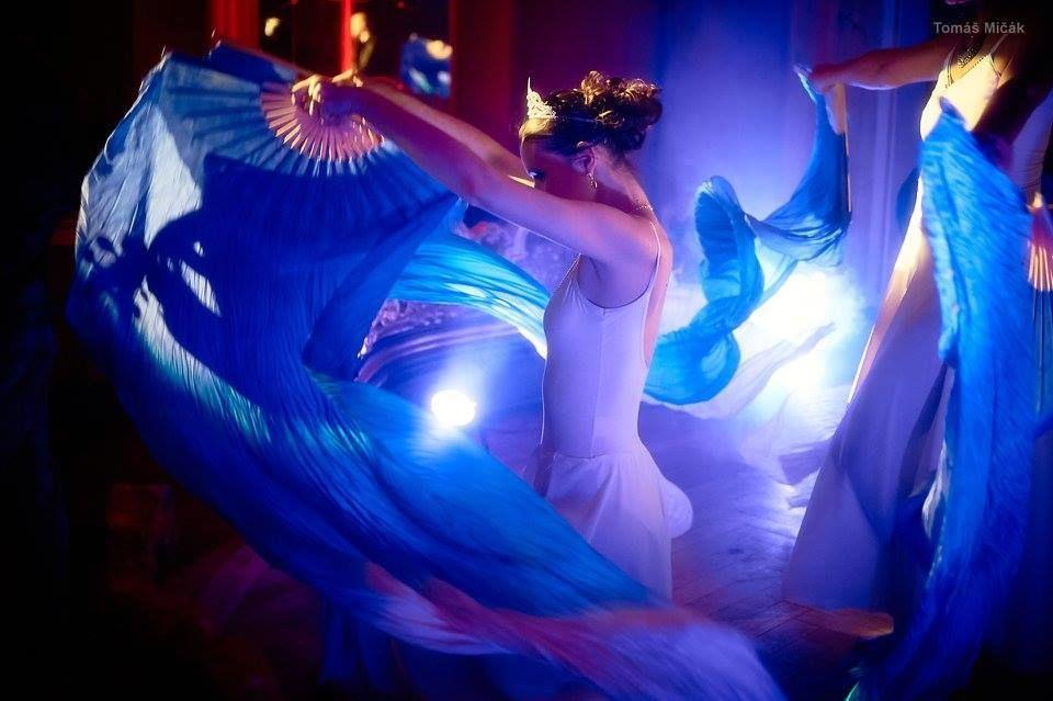 Komponovaný program - taneční vystoupení - Vltava - Rinas Company