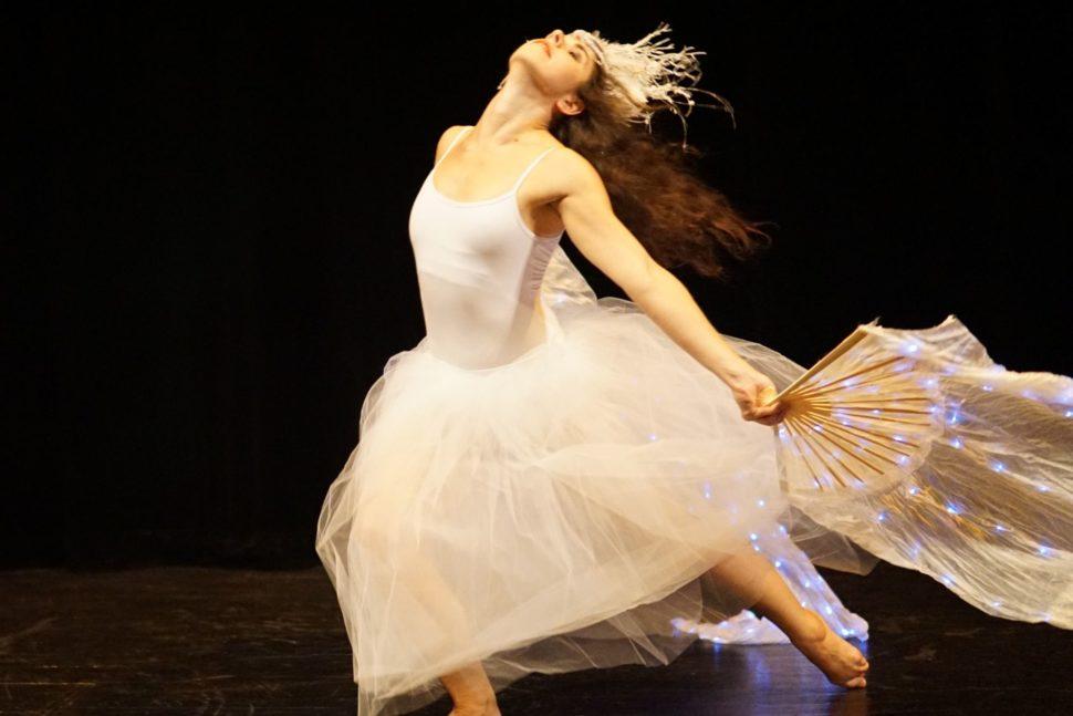 Winter dance show - taneční vystoupení - Rinas Company